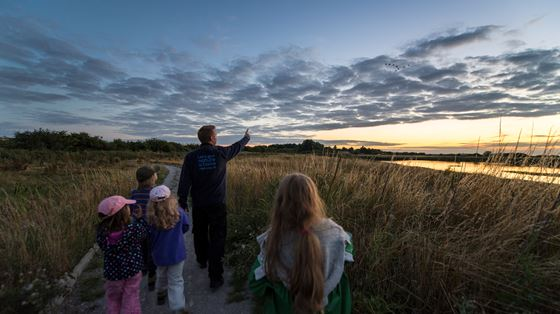 Big Wild Sleepout at Frampton Marsh