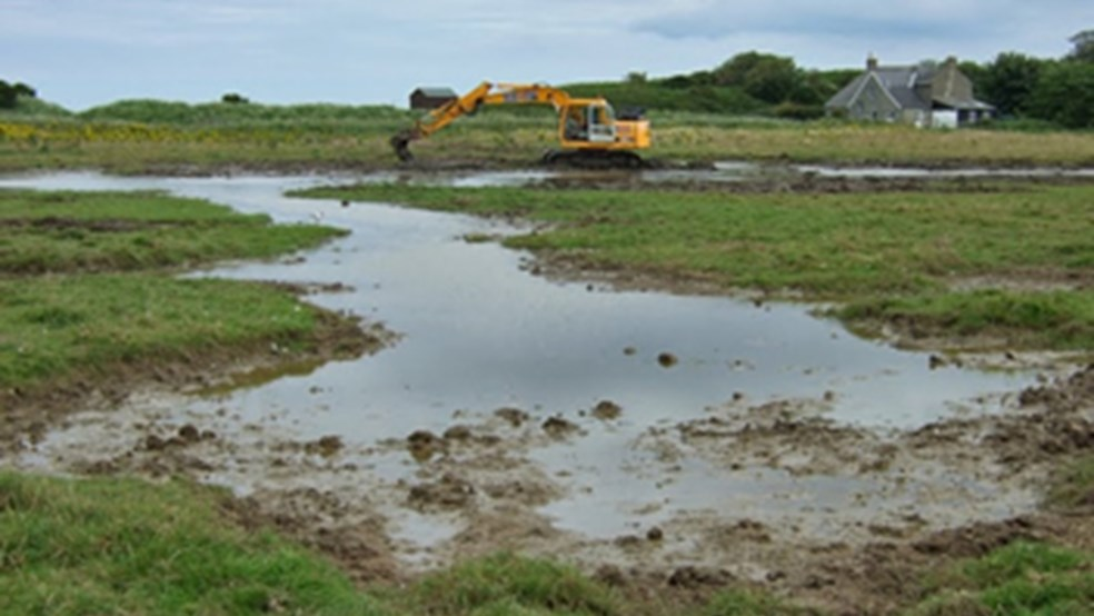 Digging a large scrape to create new habitat for yellow wagtail and lapwing.
