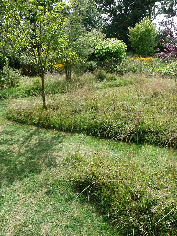 Give your mower a rest for Like long grasses