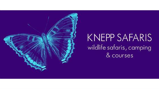 Knepp Safaris, West Sussex