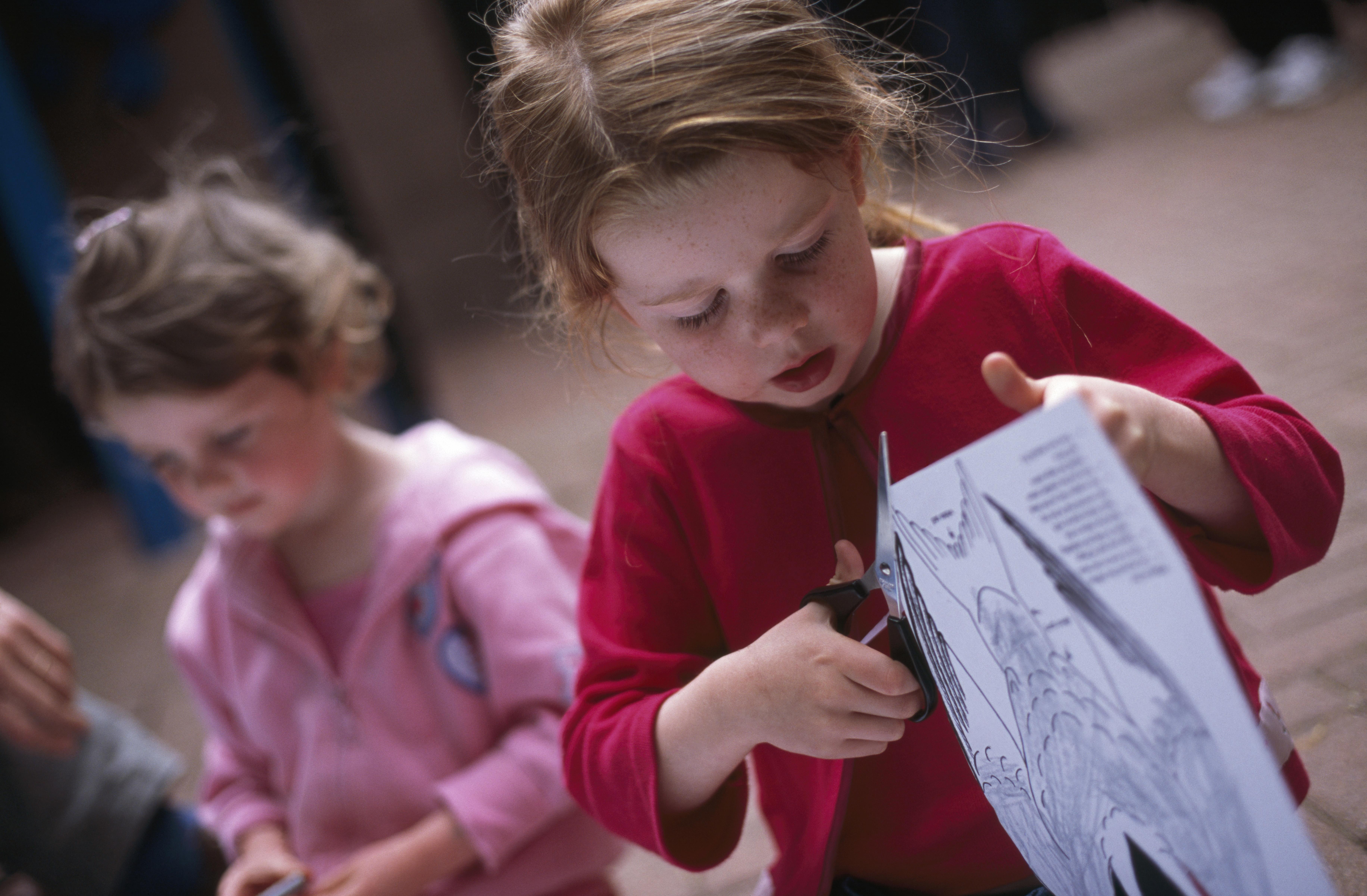 Big Schools Birdwatch Resources The Rspb