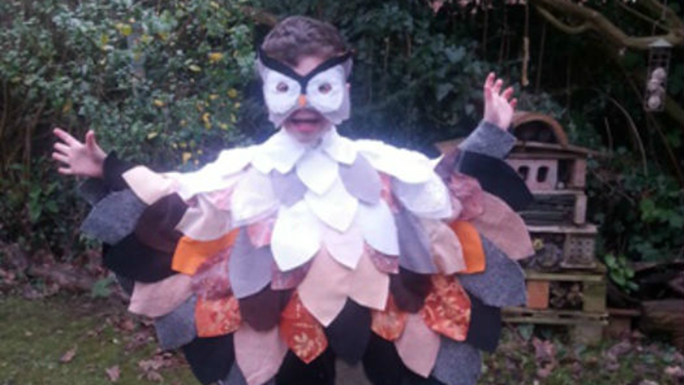Thomas, aged 5 dressed as an owl