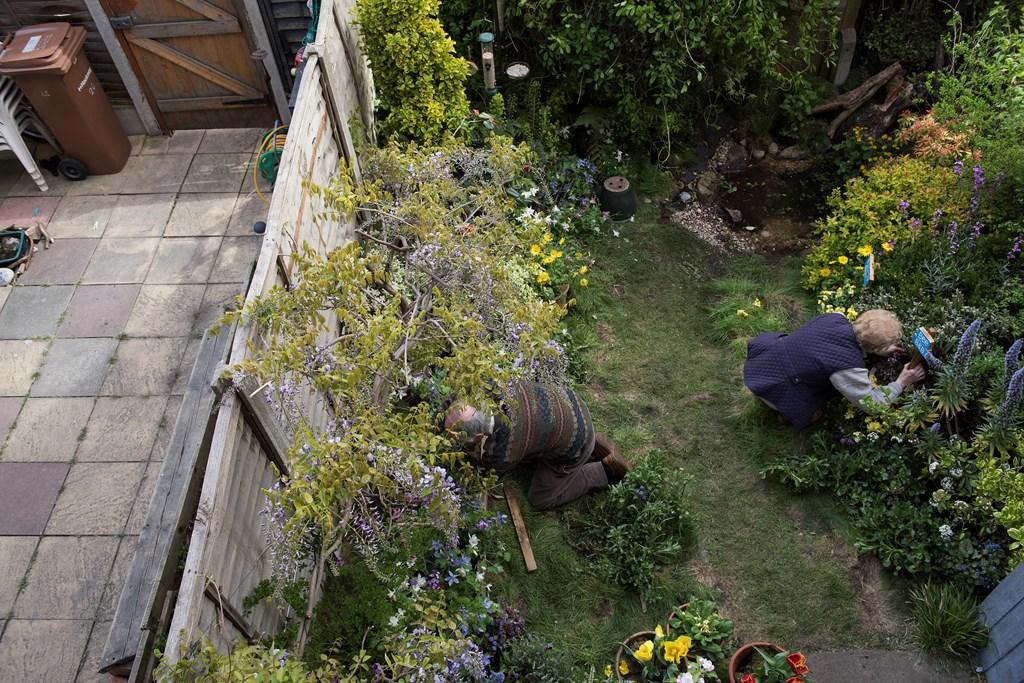 Gardening For Wildlife - The RSPB