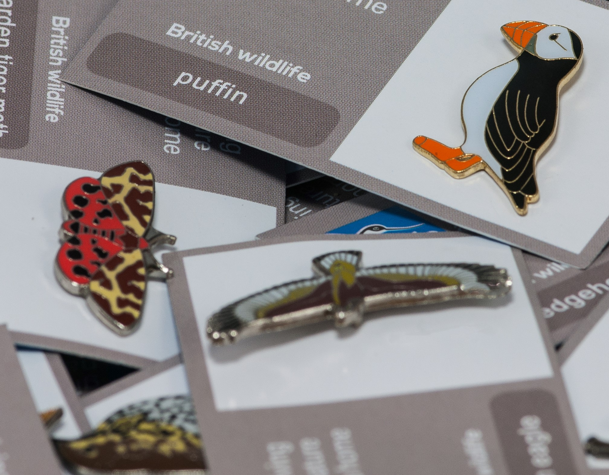 Pin Badges   Charity Pin Badges to Collect - RSPB Fundraising