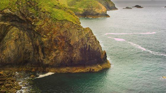 Ramsey Island