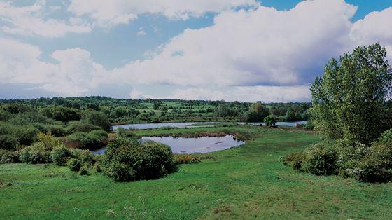 Sandwell Valley, West Midlands