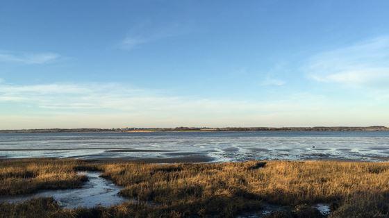 Stour Estuary