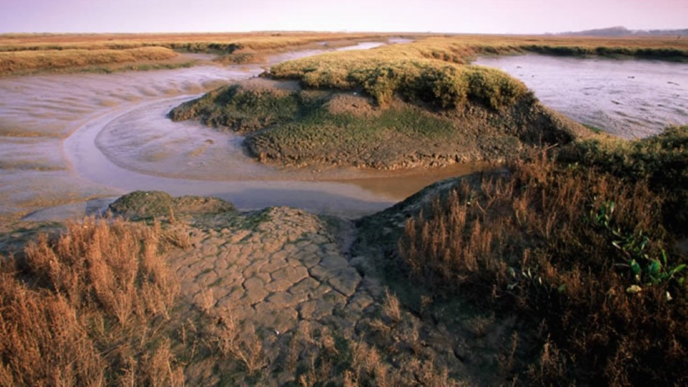 RSPB Titchwell reserve, saltmarsh, mudflats and creeks