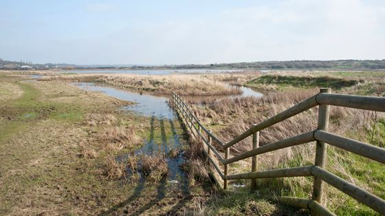 Vange Marsh