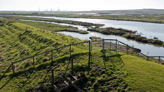 West Canvey Marsh